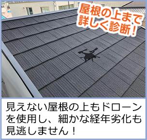 屋根の上まで詳しく診断